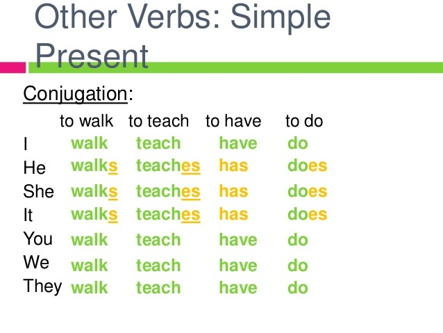 Present simple Engleski jezik Gramatika