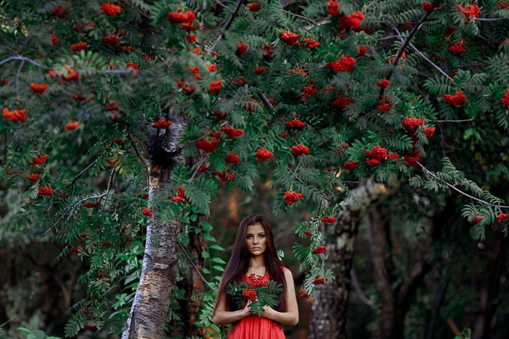 фотосессия в лесу с рябиной вообще, можно