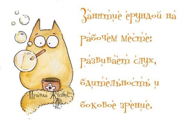 Картинки для поднятия настроения девушке прикольные короткие смешные, для открыток