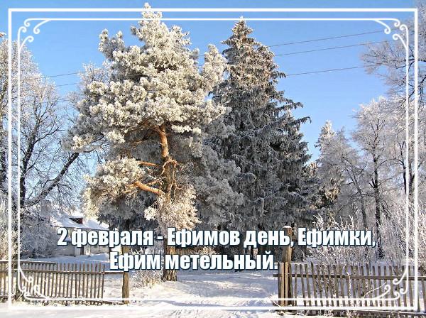 i-102541.jpg