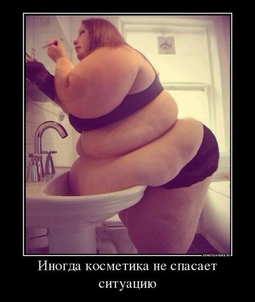 Картинки демотиваторы для толстых