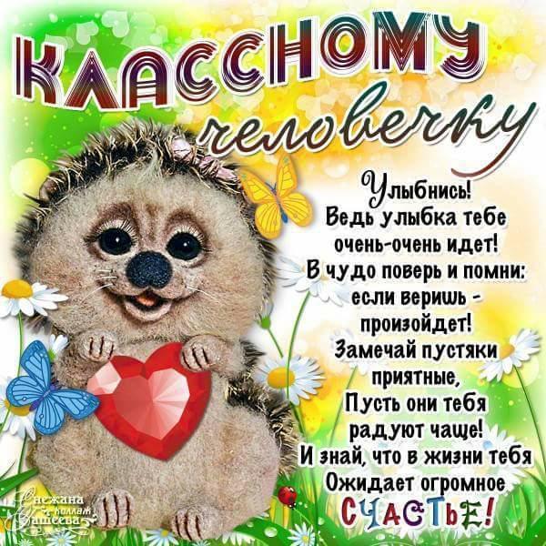 открытки доброму человеку добрым днем лишь, что все